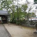 豊玉姫神社 (6)