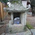 Photos: 豊玉姫神社 (9)