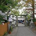 Photos: 豊玉姫神社 (13)