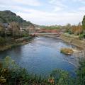 轟の滝公園 (16)