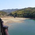 Photos: 畑貯水池 (2)