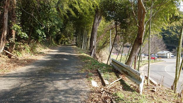 Photos: 白木橋駐車場から白木谷梅林へ向かう (1)