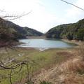 Photos: 白木貯水池 (1)