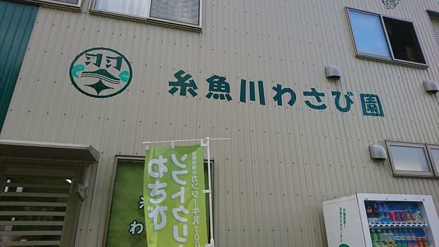 写真: DSC_0721