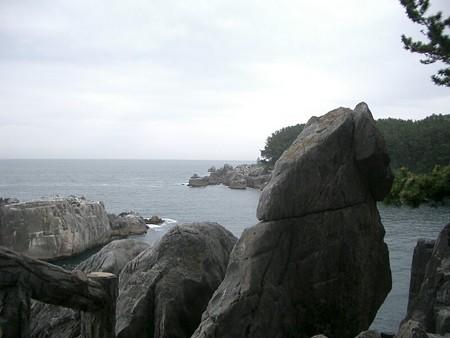 oogama5