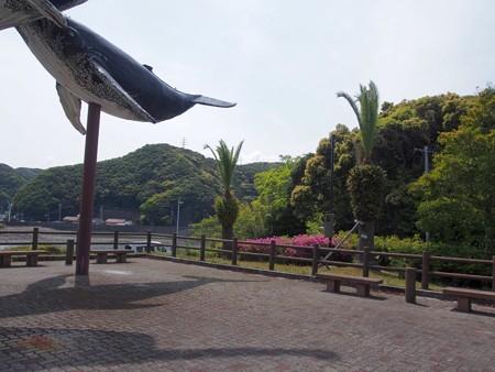kujirakouen06