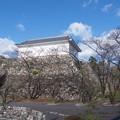 kameyamasiroatokouen01