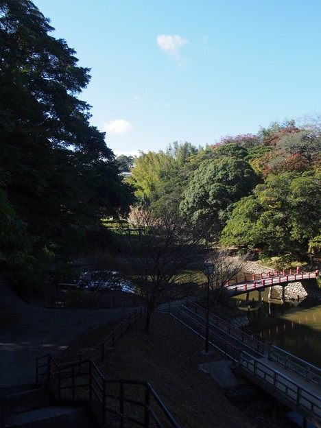 写真: kameyamasiroatokouen47