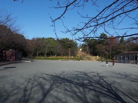 uminomierukataokayamaryokuti04
