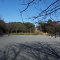Photos: uminomierukataokayamaryokuti04