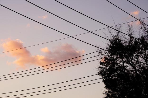 写真: 交差する空