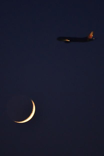 写真: 月と鶴