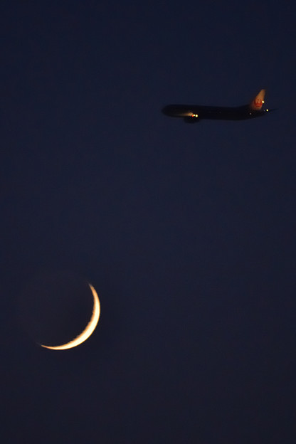 Photos: 月と鶴
