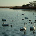 Photos: ポロト湖2