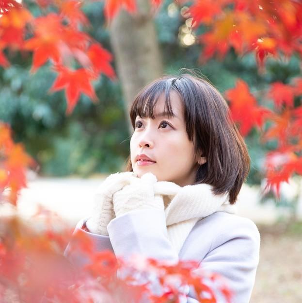 12月の秋日和