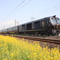写真: ななつ星in九州列車 139