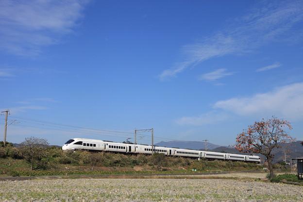Photos: 柿、特急列車