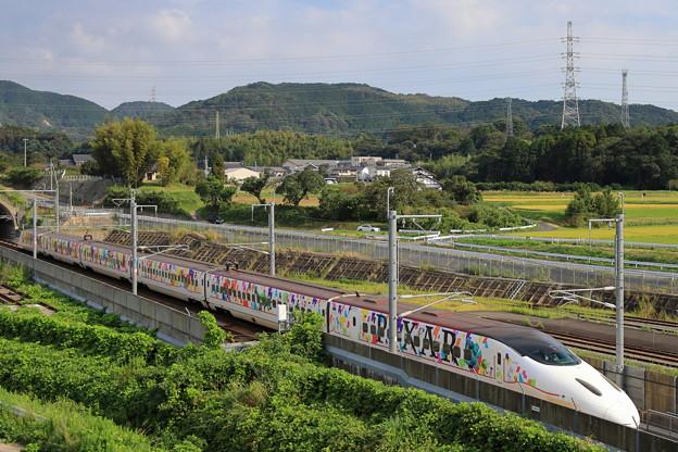Photos: ラッピング新幹線
