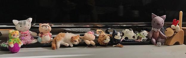 Photos: てづくり猫たち