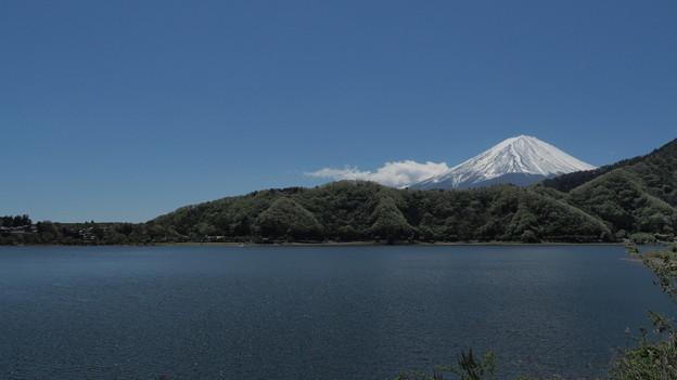 Photos: 西湖と富士山