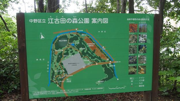 江古田の森公園案内板