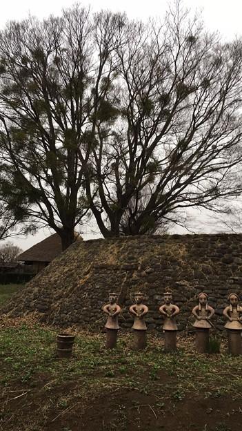 写真: oomuro01
