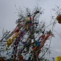 写真: 杉戸宮代七夕祭り02