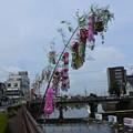 写真: 杉戸宮代七夕祭り04