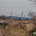 Photos: YONE3810