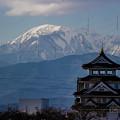 Photos: YONE0038