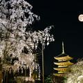 Photos: 3.229日。東寺