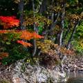 Photos: 九頭竜湖-8
