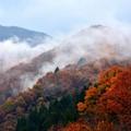 写真: 霧湧く