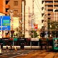 写真: 1-広島電鉄5000形電車