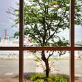 ~窓の外・・~