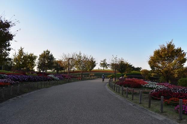 夕暮れの秋空 2
