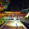 写真: 秋、深まりゆく 2