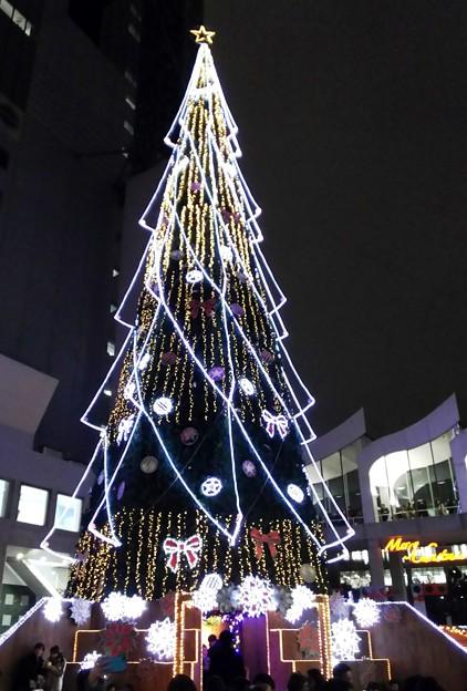 クリスマスツリー1