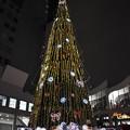 Photos: クリスマスツリー2