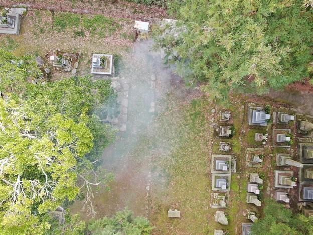 墓地塵焼却040503