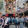 Photos: 西行桜狸山