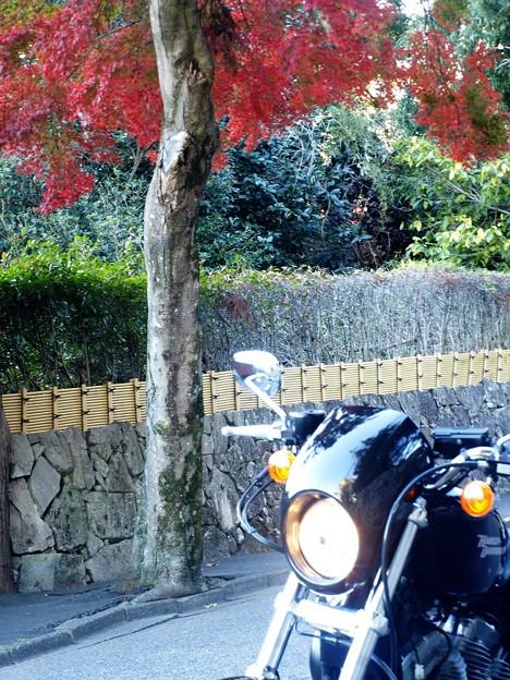 バイクにご褒美