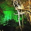 石山寺の夜景3