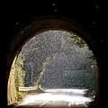 写真: トンネルの向こう