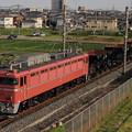 Photos: EF81-81+ホキ4B