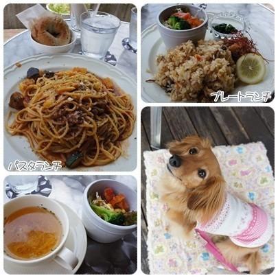 20120624 cafe chouchou ランチ (2)