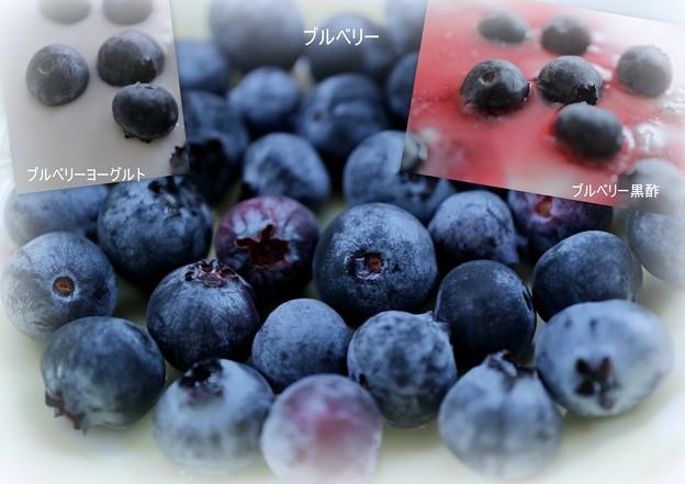 Photos: ブルベリー収穫