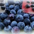 写真: ブルベリー収穫