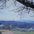 Photos: 山並みと桜