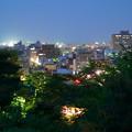 写真: 5月の兼六園 眺望台から